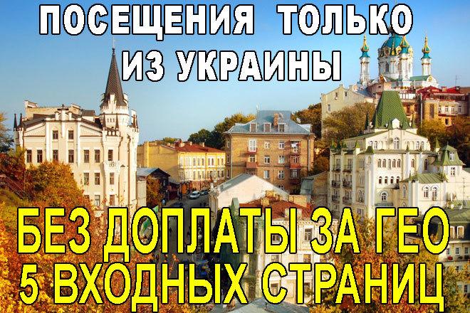 Посетители на сайт только из Украины 1 - kwork.ru