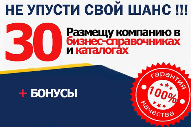 Размещу компанию в 30 бизнес справочниках и каталогах 1 - kwork.ru