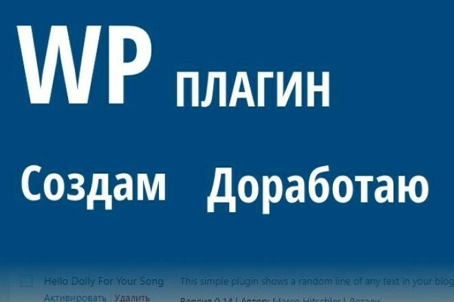 Создам, доработаю, установлю плагин WordPress 1 - kwork.ru
