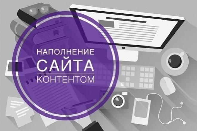 Наполню Ваш сайт товарами, контентом 1 - kwork.ru