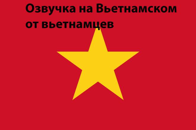 Сделаем озвучку на вьетнамском 1 - kwork.ru