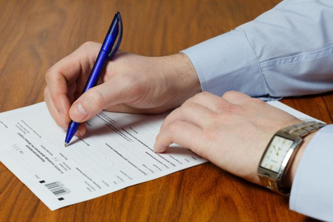 Сделаю декларацию по налогу на доходы физических лиц для ЮЛ и ИП 1 - kwork.ru