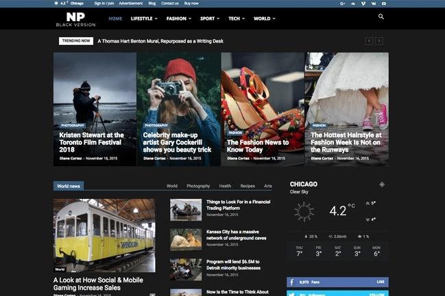 Создадим блог, журнал, новостной портал на WordPress 7 - kwork.ru