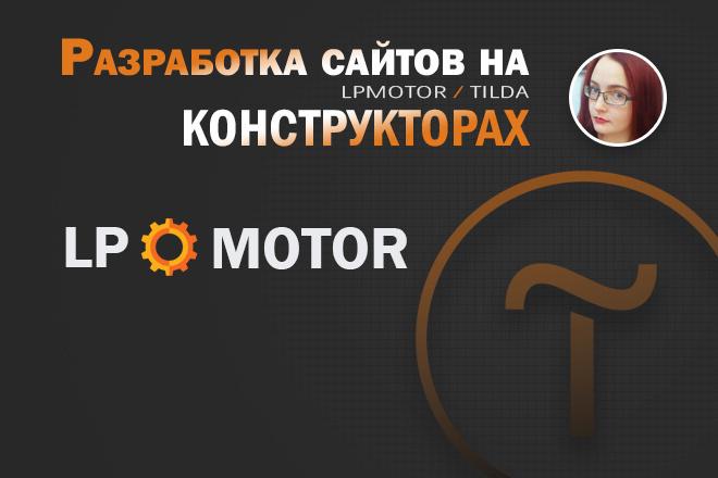 Разработка Landing page LPmotor 20 - kwork.ru