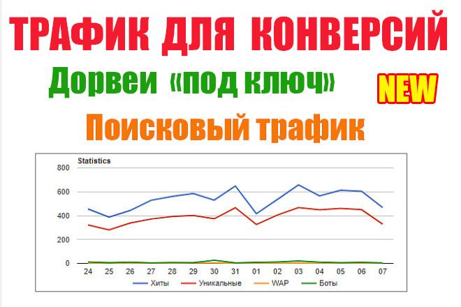 Трафик для конверсий. Дорвей под ключ 1 - kwork.ru