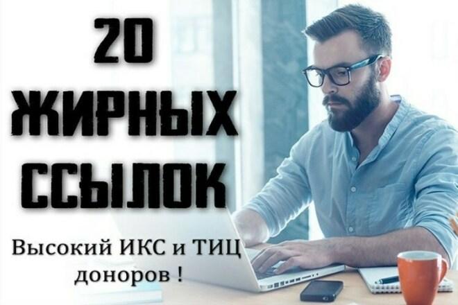 20 ссылок на трастовых сайтах с высоким ИКС 1 - kwork.ru