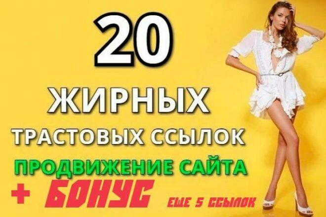 20 жирных вечных ссылок установлю вручную на трастовые сайты 1 - kwork.ru