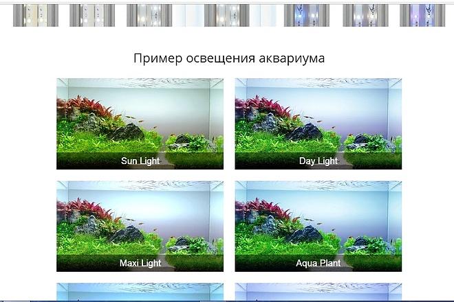 Сверстаю сайт по макету 2 - kwork.ru