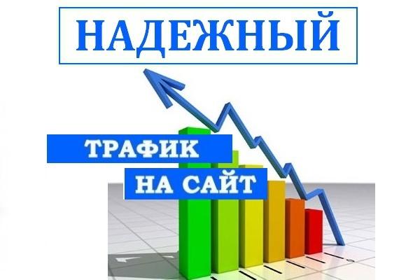 Посетители на сайт 1000 человек по ключевым запросам 1 - kwork.ru