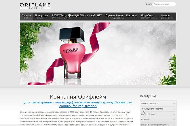 Адаптивный Landing Page под ключ 1 - kwork.ru