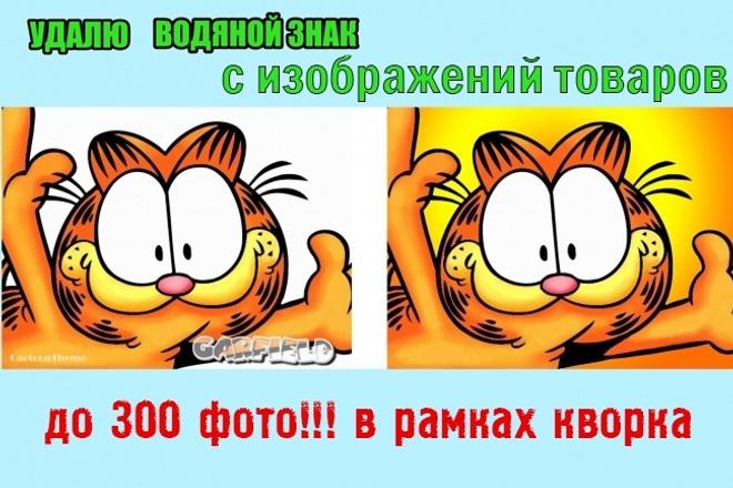 Обработка водяных знаков на фото 5 - kwork.ru
