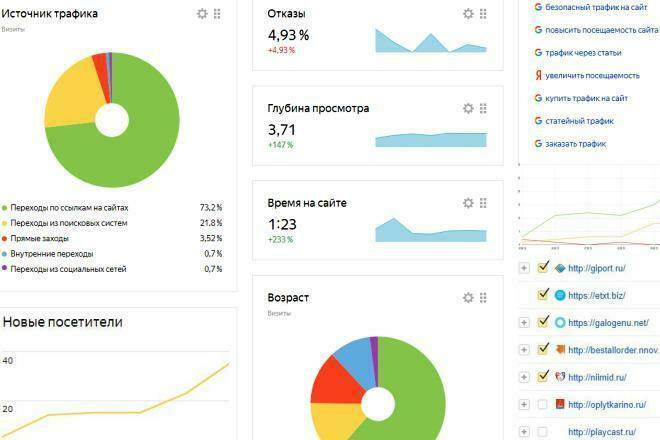 Трафик откуда угодно 1 - kwork.ru