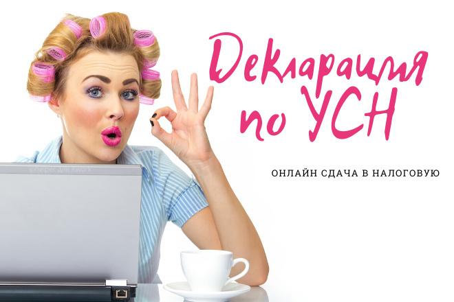 Декларация для ИП на УСН с онлайн отправкой в налоговую 1 - kwork.ru