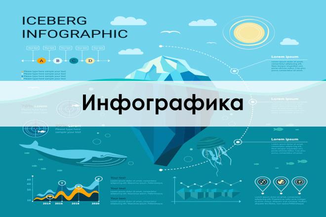 Инфографика 24 - kwork.ru