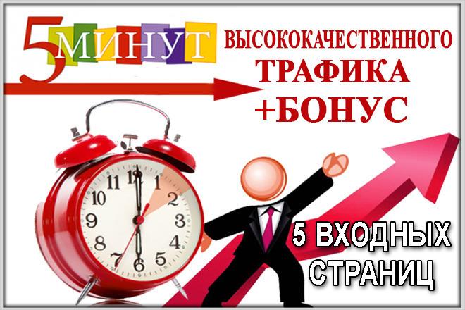 Высококачественный трафик до 5 минут на сайте 1 - kwork.ru