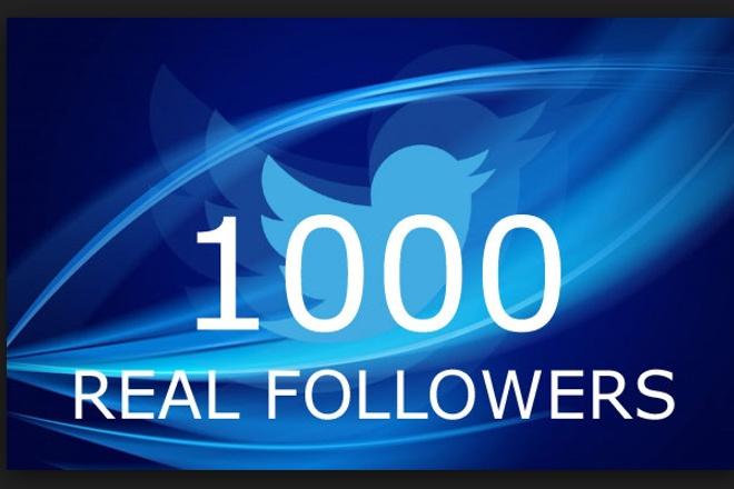 1000 активных Фалловеров в Twitter 1 - kwork.ru