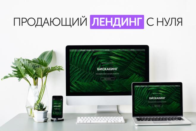 Создадим стильный адаптивный лендинг на Tilda 5 - kwork.ru
