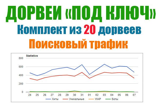 20 дорвеев под ключ. Трафик на ваши сайты 1 - kwork.ru