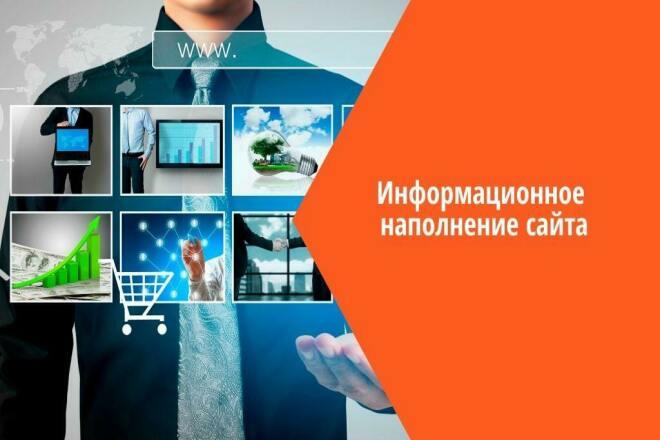 Добавлю в интернет-магазин 100 товаров, наполнение сайта 1 - kwork.ru