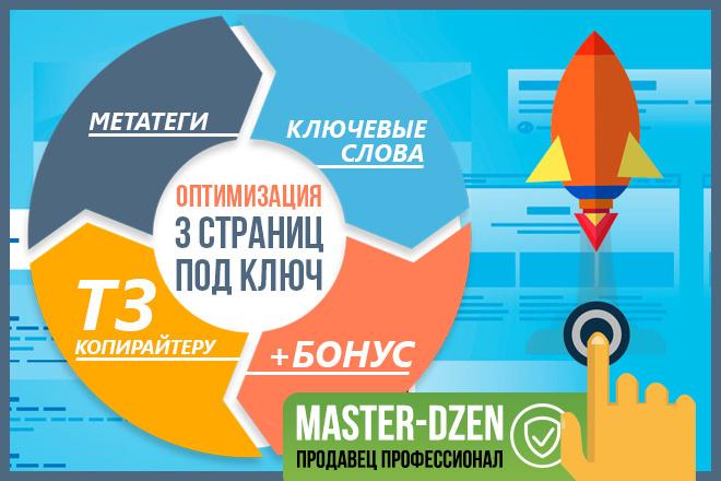 SEO оптимизация для 3 страниц - Метатеги, ТЗ копирайтеру, ключи+Бонус 1 - kwork.ru