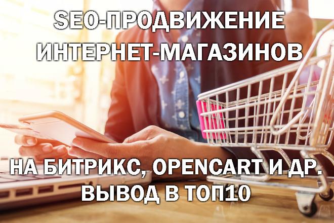 SEO-продвижение интернет-магазина - вывод в ТОП10 Яндекс и Google 1 - kwork.ru