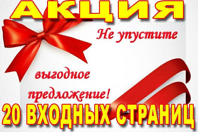 2000 переходов на 20 входных страниц 1 - kwork.ru