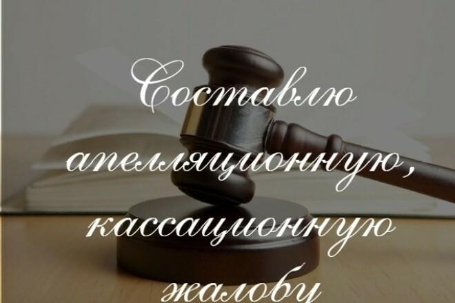 Подготовлю апелляционную, кассационную жалобу 1 - kwork.ru