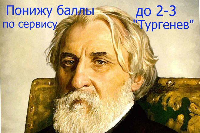 Защита сайта от фильтра Баден. Понижу до 0 статьи по Тургенев 1 - kwork.ru