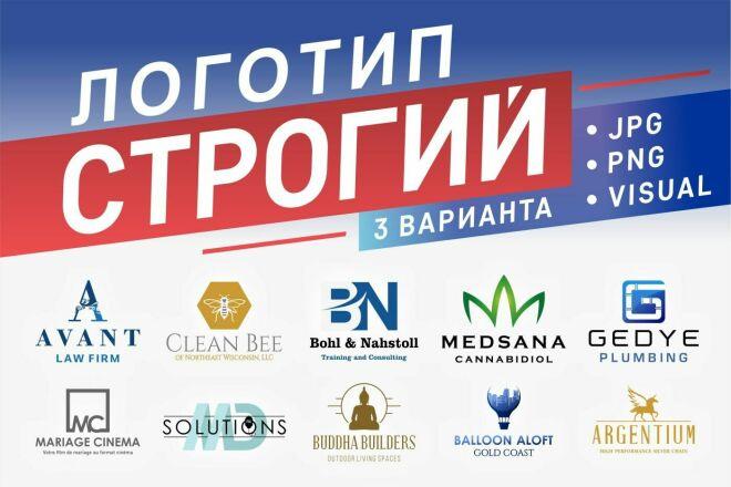 Создам строгий логотип в трех вариантах 46 - kwork.ru