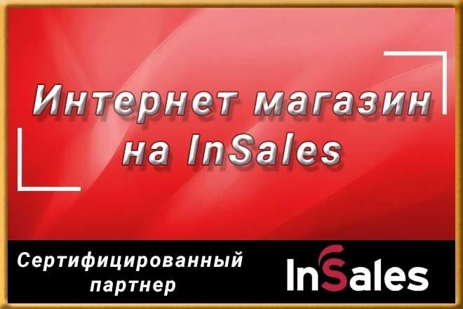 Профессионально создам интернет-магазин на insales + 20 дней бесплатно 72 - kwork.ru