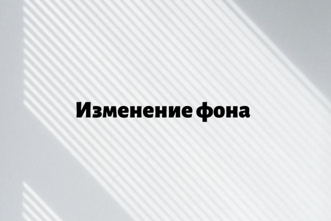Удаление заднего фона 9 - kwork.ru