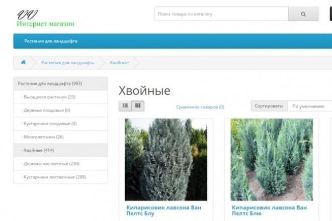 Создам интернет-магазин на  OpenCart 1 - kwork.ru