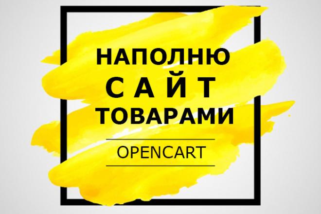 Ручное наполнение интернет-магазина товарами 1 - kwork.ru