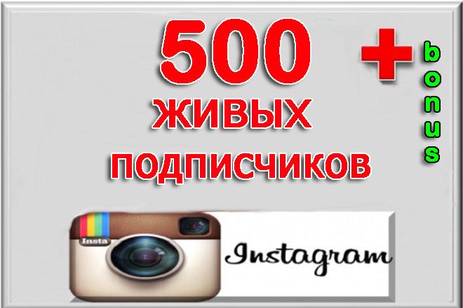 500 Живых подписчиков, высокое качество, в Instagram + bonus 1 - kwork.ru