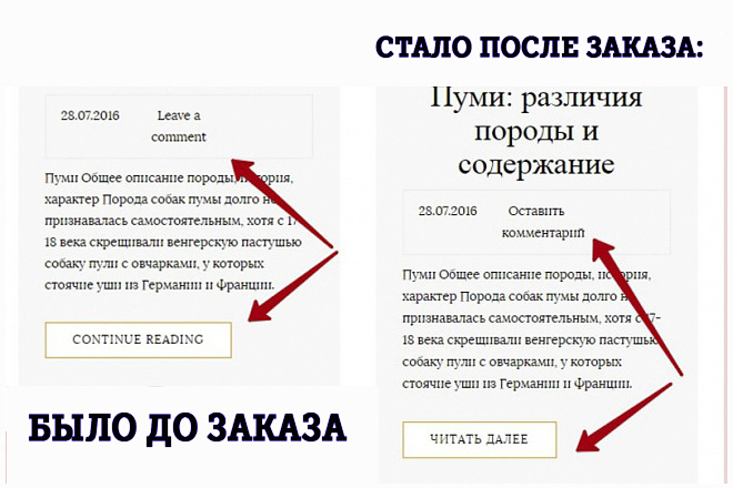 Перевод пользовательской части сайта на русский язык 1 - kwork.ru