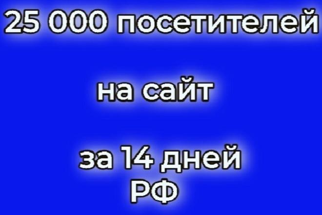 25 000 посетителей на сайт за 14 дней 1 - kwork.ru
