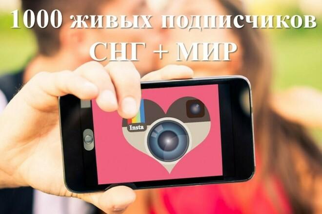 1000 живых подписчиков instagram. СНГ+МИР 1 - kwork.ru