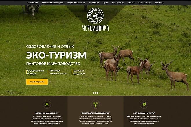Продающий сайт - Лендинг под ключ, для любых целей 111 - kwork.ru