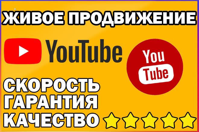 2000 живых просмотров видео на YouTube. Продвижение 1 - kwork.ru