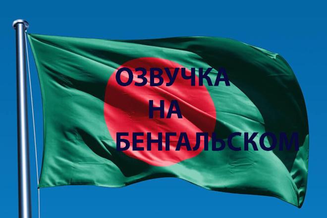 Озвучка на бенгальском 1 - kwork.ru