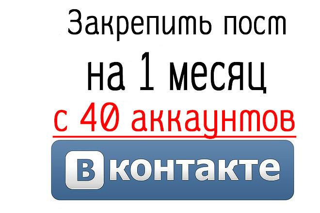 Закреплю ваш пост с 40 аккаунтов Вконтакте на 30 дней 1 - kwork.ru